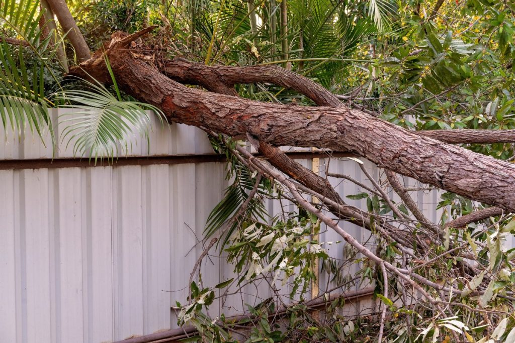 Does Home Insurance Cover Damage to a Neighbor's Property?
